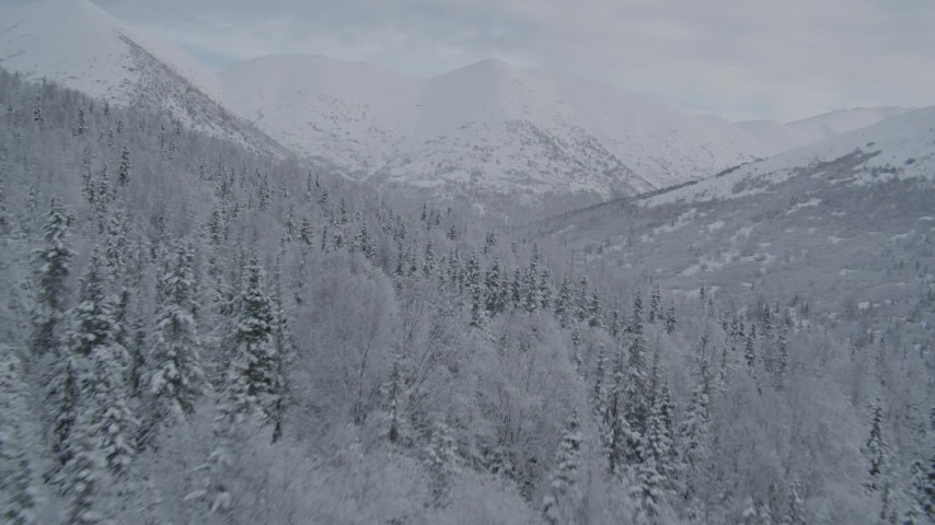 4K stock footage aerial video fly low over wooded slope toward snowy Chugach Mountains, Alaska Aerial Stock Footage | AK0001_0764