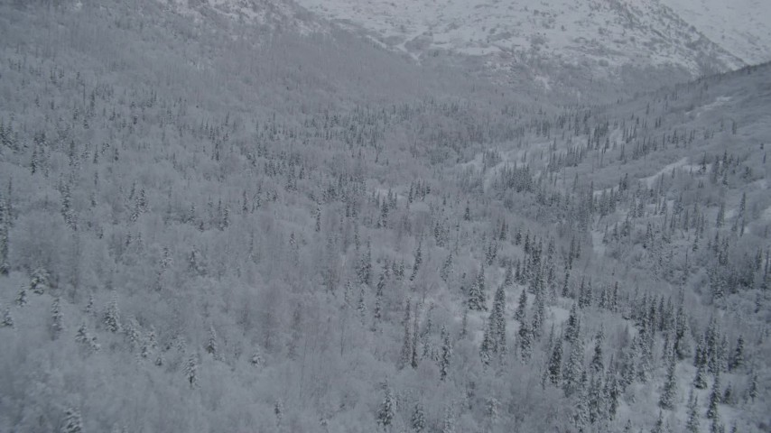 4K stock footage aerial video flying over wooded slopes, winter, Chugach Mountains, Alaska Aerial Stock Footage | AK0001_0765