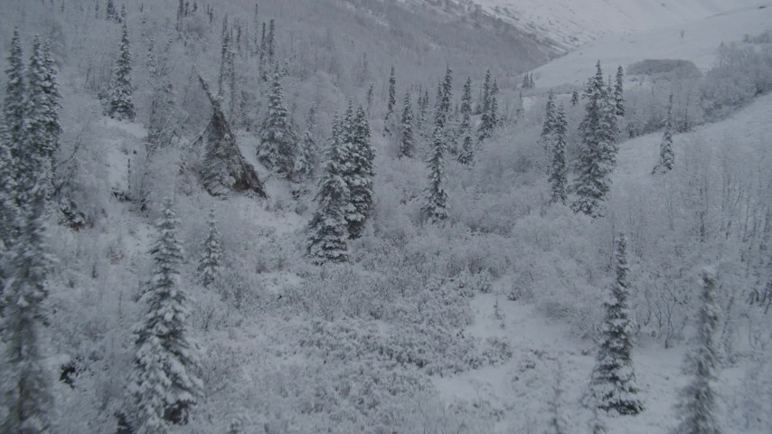 4K stock footage aerial video flying low over snowy treetops, winter, Chugach Mountains, Alaska Aerial Stock Footage   AK0001_0767