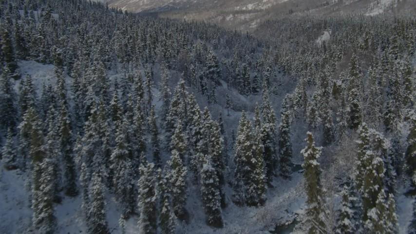 4K aerial video follow river through forest in snowy valley, Chugach Mountains, Alaska Aerial Stock Footage | AK0001_0806
