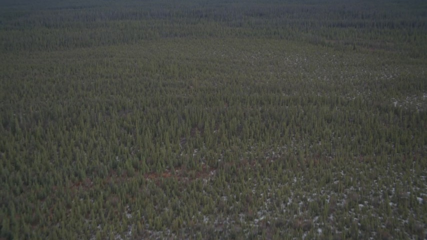 4K stock footage aerial video flying over a small river and snowy forest during winter, Alaskan Wilderness Aerial Stock Footage | AK0001_0907