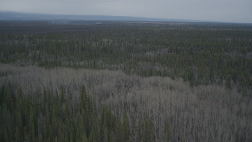 4K stock footage aerial video flying over forests, during winter, Alaskan Wilderness Aerial Stock Footage | AK0001_0970
