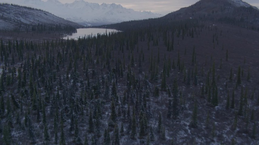 4K stock footage aerial video forest and lake, snowy Chugach Mountains, Matanuska River Valley, Alaska Aerial Stock Footage | AK0001_1071