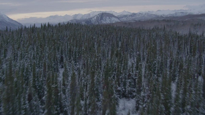 4K stock footage aerial video flying over a snowy, tree topped cliff beside the Matanuska River Valley, Alaska Aerial Stock Footage | AK0001_1089