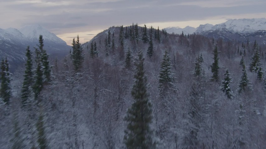 4K stock footage aerial video flying over snow covered, wooded hills near Matanuska River Valley, Alaska Aerial Stock Footage | AK0001_1096