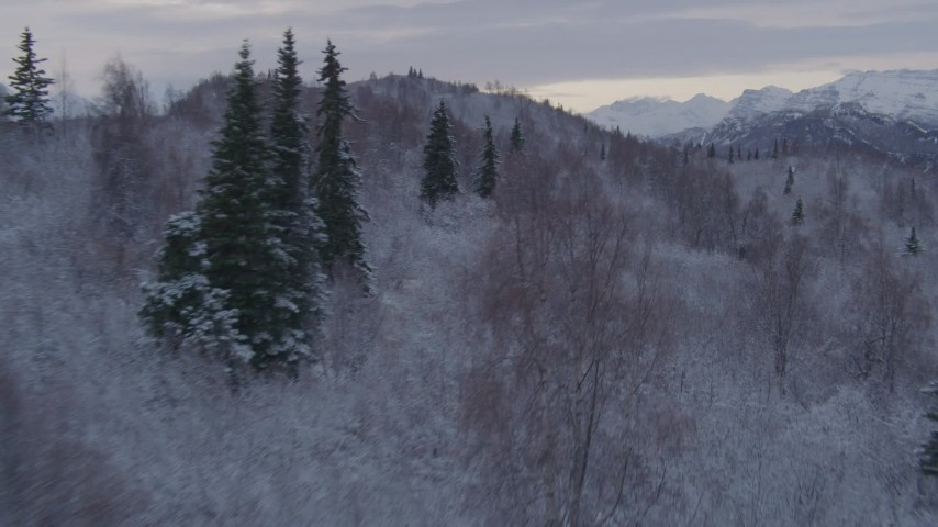 4K stock footage aerial video flying over snowy, wooded hills toward Talkeetna Mountains, Alaskan Wilderness Aerial Stock Footage | AK0001_1097