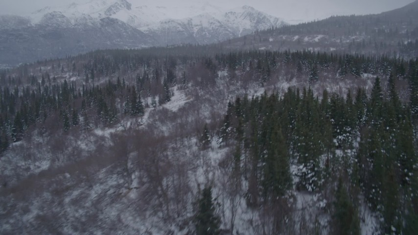 4K stock footage aerial video flying up a snow covered, wooded foothill in the Chugach Mountains, Alaska Aerial Stock Footage | AK0001_1159