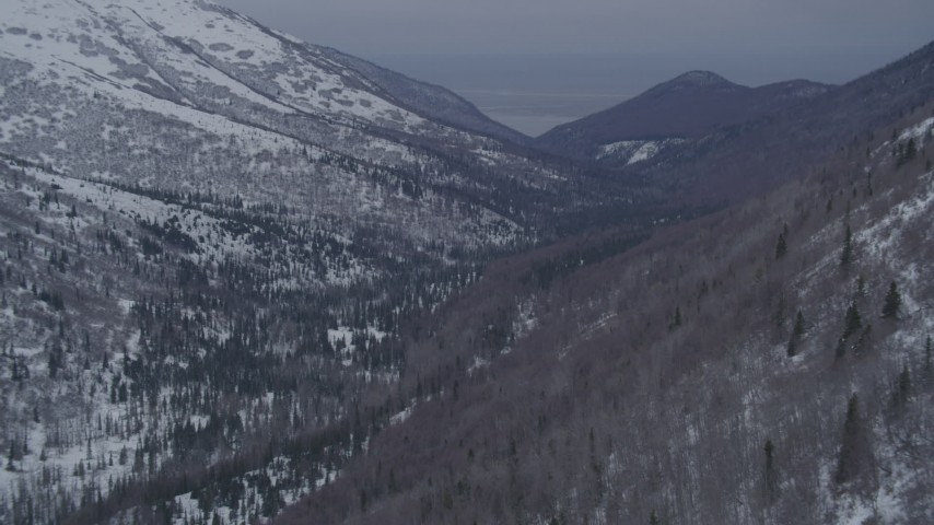 4K stock footage aerial video flying over snow covered wooded valley in the Chugach Mountains, Alaska Aerial Stock Footage | AK0001_1188
