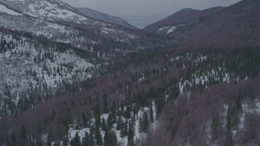 4K stock footage aerial video flying over a wooded valley in the snow covered Chugach Mountains, Alaska Aerial Stock Footage | AK0001_1189