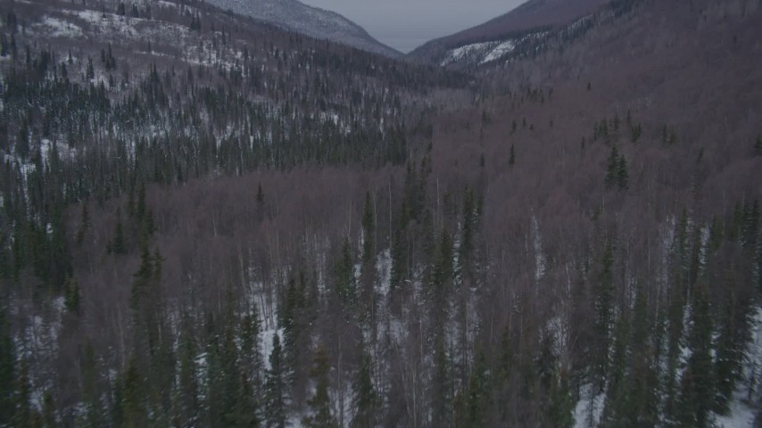 4K aerial stock footage video flying low over wooded hills in the snow covered Chugach Mountains, Alaska Aerial Stock Footage | AK0001_1190