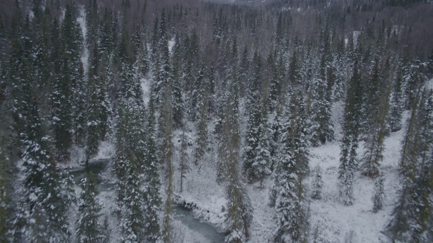 4K stock footage aerial video flying low over snow covered forests revealing a river, Chugach Mountains, Alaska Aerial Stock Footage | AK0001_1192