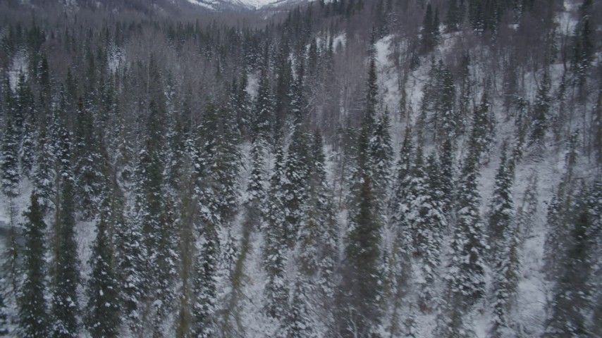4K stock footage aerial video flying over snowy, wooded valley revealing river, Chugach Mountains, Alaska Aerial Stock Footage | AK0001_1195