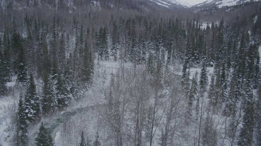 4K stock footage aerial video flying over snowy, wooded valley revealing a river, Chugach Mountains, Alaska Aerial Stock Footage | AK0001_1196