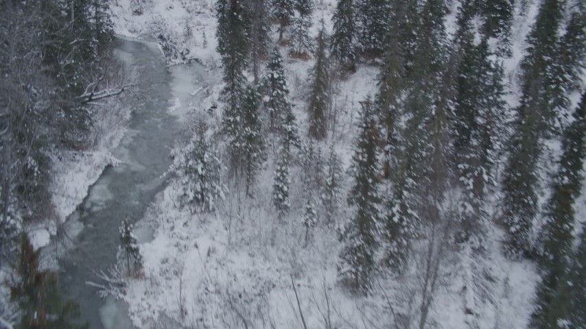 4K stock footage aerial video flying low over river through snow covered forest, Chugach Mountains, Alaska Aerial Stock Footage | AK0001_1200