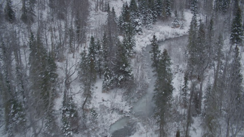 4K stock footage aerial video flying low over river through snow covered forest, Chugach Mountains, Alaska Aerial Stock Footage | AK0001_1201