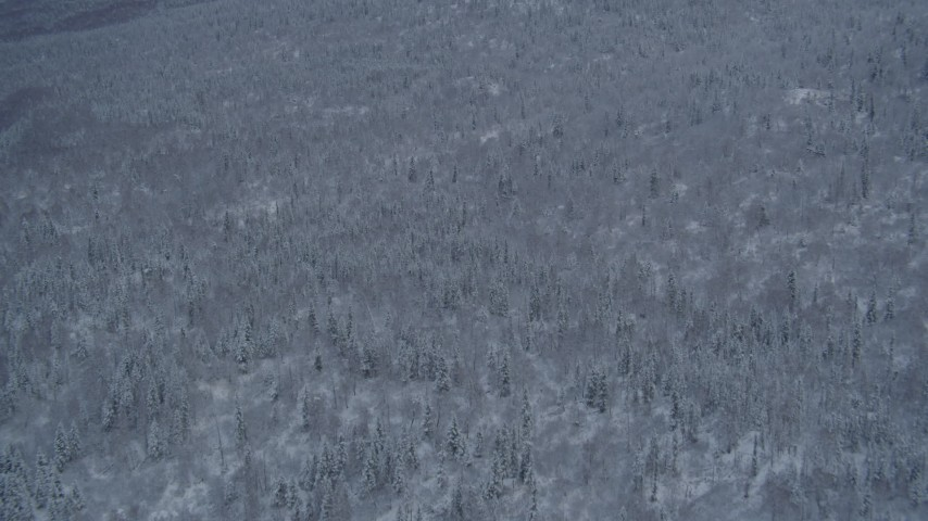 4K stock footage aerial video approaching snow covered, wooded slopes in Chugach Mountains, Alaska Aerial Stock Footage | AK0001_1531