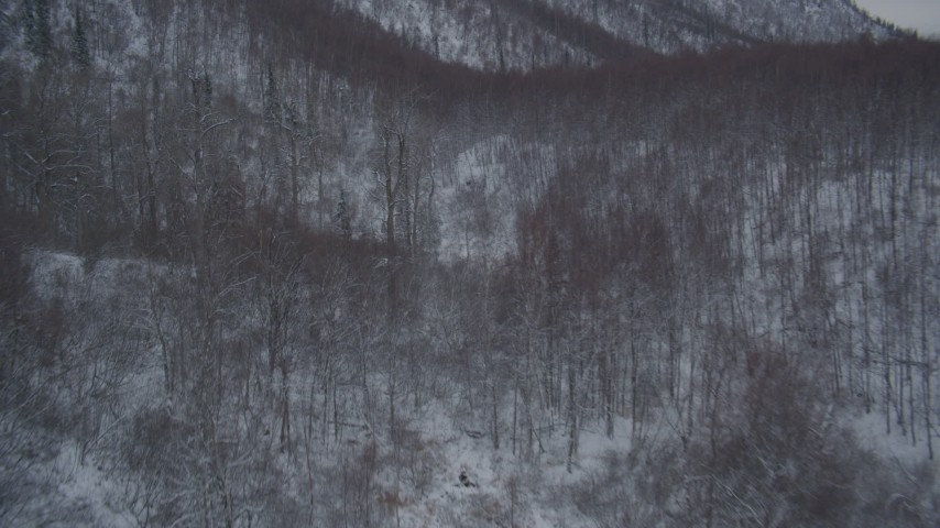 4K stock footage aerial video flying over snow covered, wooded hills at base of Chugach Mountains, Alaska Aerial Stock Footage   AK0001_1620