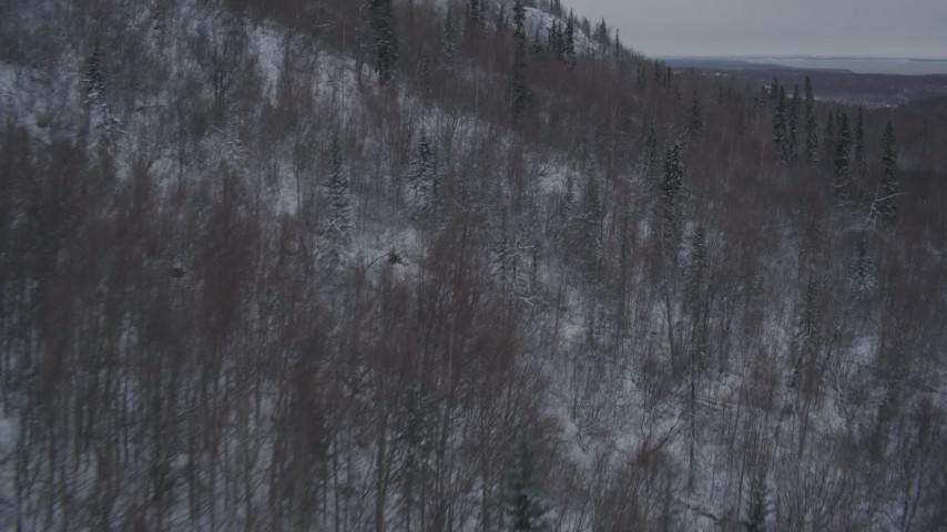 4K aerial video flying over snow covered, wooded hills in Chugach Mountains, Alaska Aerial Stock Footage | AK0001_1621