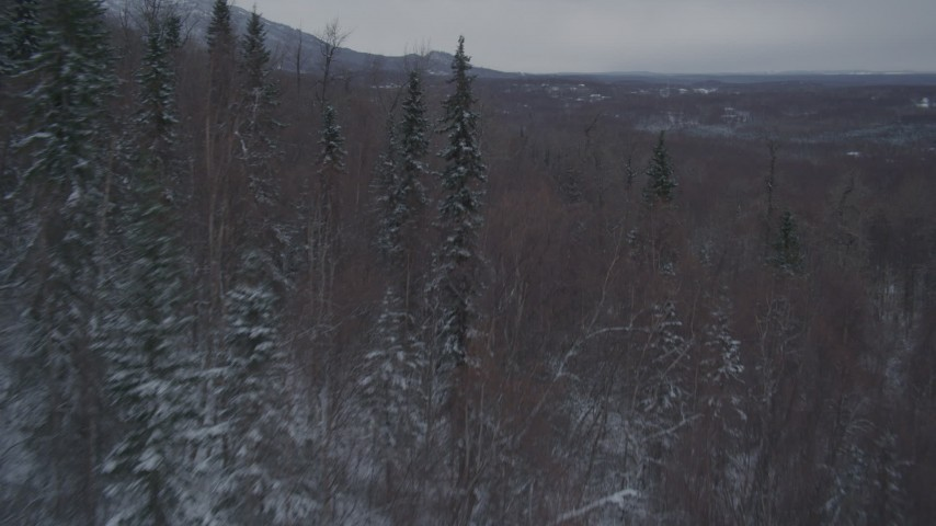 4K stock footage aerial video snow covered, wooded slopes in the Chugach Mountains, Alaska Aerial Stock Footage | AK0001_1622