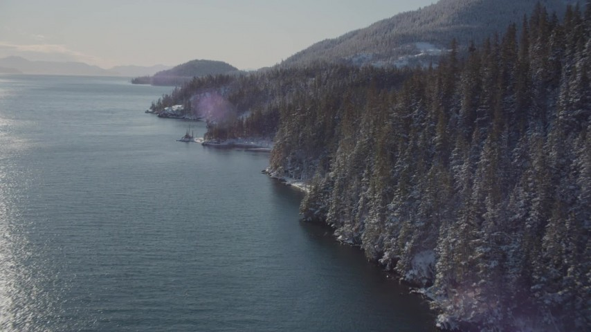 4K stock footage aerial video flying along snowy, wooded shore of Port Wells, Alaska Aerial Stock Footage | AK0001_1839