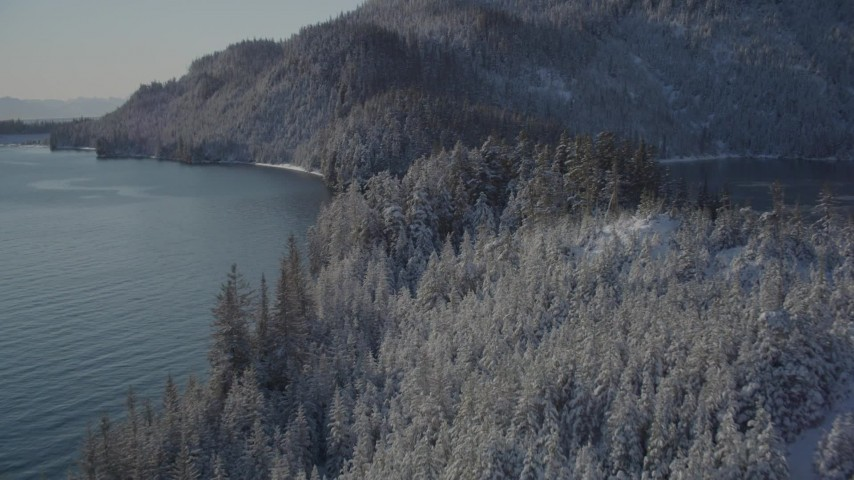 4K stock footage aerial video following snowy, wooded shore by Harrison Lagoon, Port Wells, Alaska Aerial Stock Footage | AK0001_1845