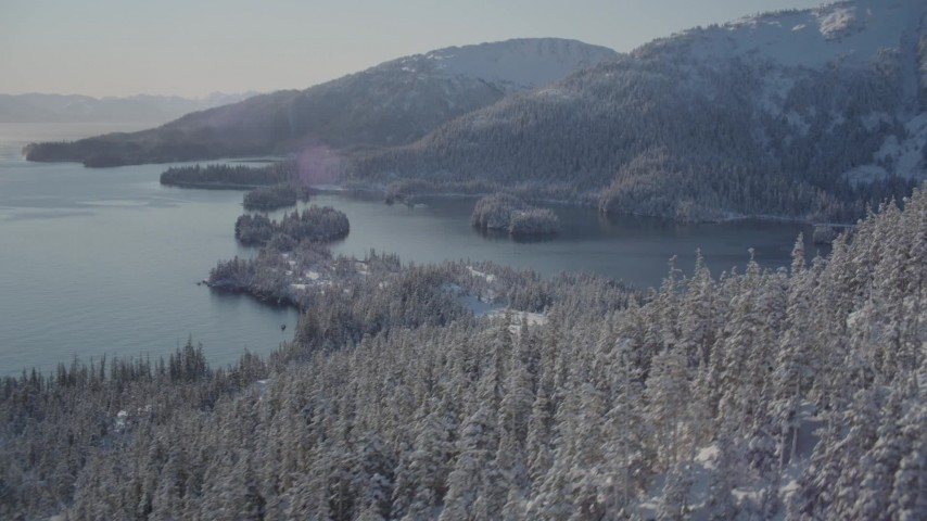 4K stock footage aerial video flying over snowy, wooded slopes, revealing Hummer Bay, Port Wells, Alaska Aerial Stock Footage | AK0001_1872