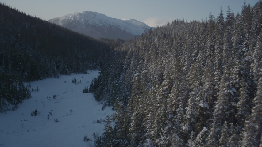 4K stock footage aerial video flying between snow covered forested slopes, Port Wells, Alaska Aerial Stock Footage | AK0001_1899