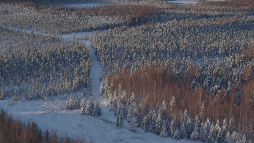 4K stock footage aerial video flying over snowy wooded shore of Point MacKenzie, Alaska Aerial Stock Footage | AK0001_2040