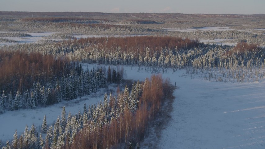 4K stock footage aerial video flying over snowy clearings and forest in Point MacKenzie, Alaska Aerial Stock Footage | AK0001_2041