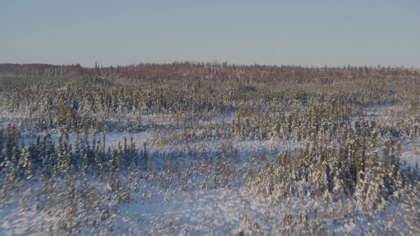 4K stock footage aerial video flying over snowy forest and clearings in Point MacKenzie, Alaska Aerial Stock Footage   AK0001_2043