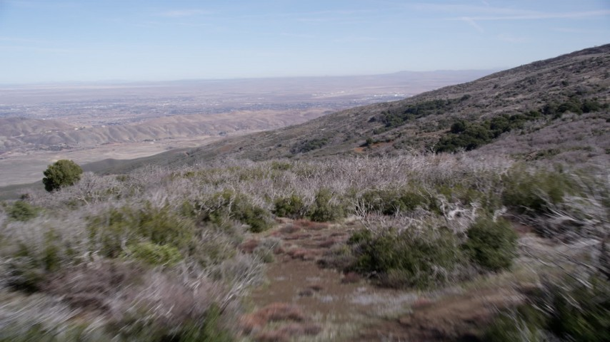 5K stock footage aerial video fly low over desert plants on a mountain ridge in the Mojave Desert, California Aerial Stock Footage | AX0005_056