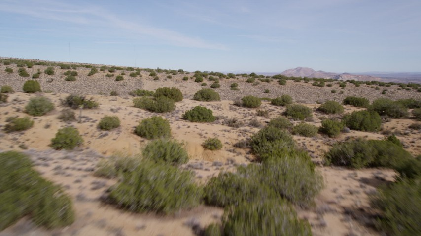 5K aerial video of flying low over desert plants in Antelope Valley, California Aerial Stock Footage | AX0006_002