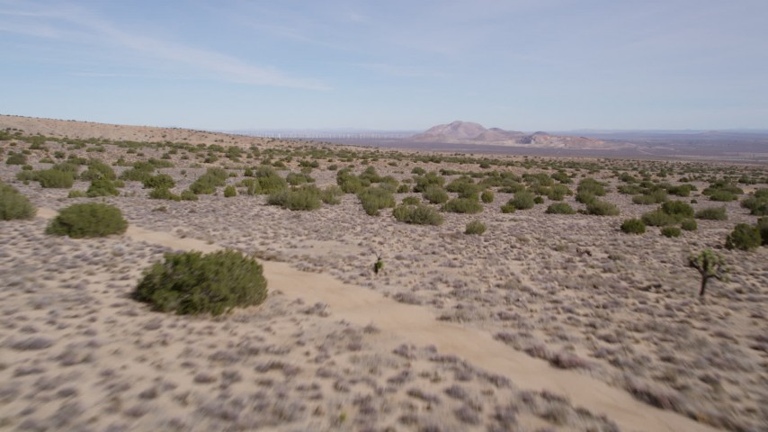 5K aerial video fly over desert plants in Antelope Valley, California Aerial Stock Footage | AX0006_003