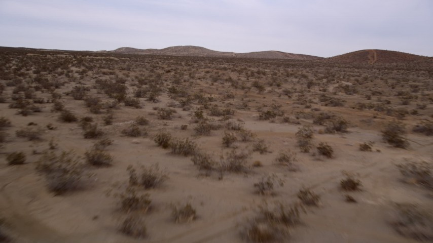 5K aerial video fly fast and low over desert vegetation in the Mojave Desert, California Aerial Stock Footage | AX0006_141