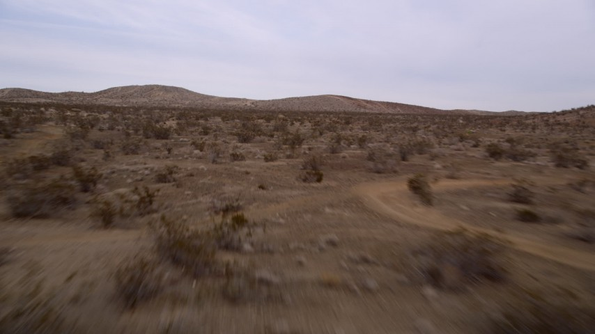 5K stock footage aerial video of racing low over desert plants toward hills in Mojave Desert, California Aerial Stock Footage | AX0006_142