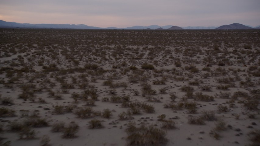 5K stock footage aerial video of flying low altitude over desert plants at twilight, Mojave Desert, California Aerial Stock Footage | AX0007_026