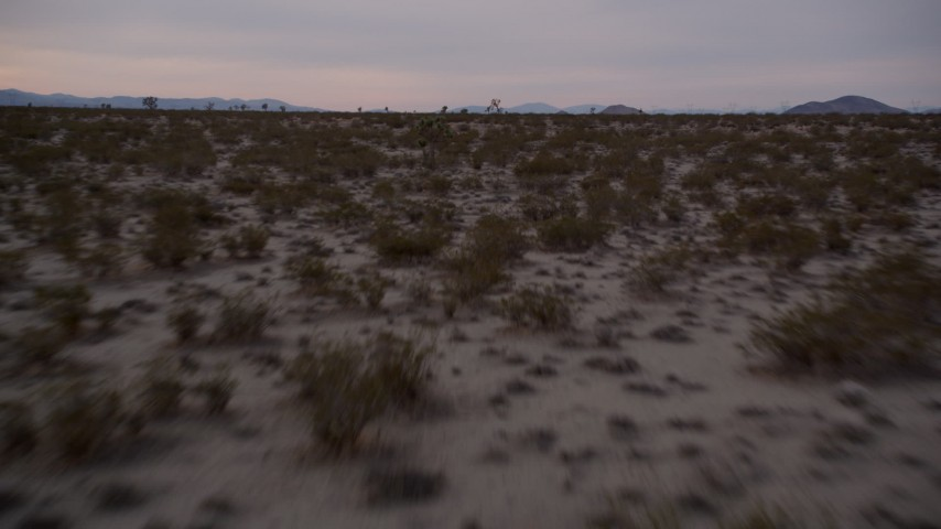 5K stock footage aerial video fly low over desert plants at Joshua Tree at twilight in Mojave Desert, California Aerial Stock Footage | AX0007_027