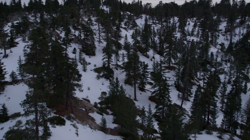 5K stock footage aerial video fly over trees and winter snow in the San Gabriel Mountains at twilight, California Aerial Stock Footage | AX0008_029