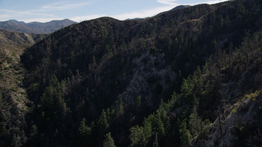 5K stock footage aerial video approach tree-lined mountain ridge in the San Gabriel Mountains, California Aerial Stock Footage | AX0009_026