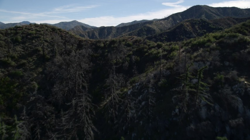 5K stock footage aerial video approach and fly over tree-lined mountain ridge in the San Gabriel Mountains, California Aerial Stock Footage | AX0009_026E