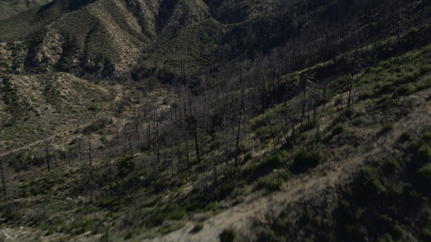 5K stock footage aerial video of leafless trees in the San Gabriel Mountains, California Aerial Stock Footage | AX0009_028