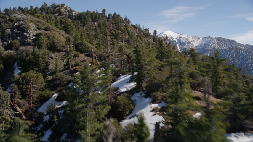 5K aerial video fly over trees and snow patches in the San Gabriel Mountains, California in Winter Aerial Stock Footage | AX0009_051