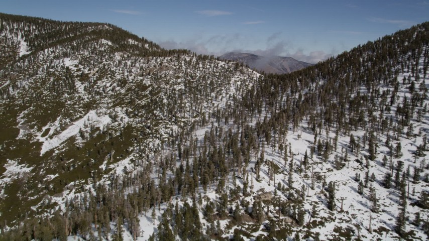 5K aerial video fly over snowy mountain ridge with evergreen forest in winter, San Bernardino Mountains, California Aerial Stock Footage   AX0009_120