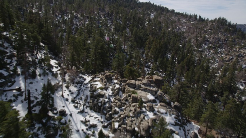 5K stock footage aerial video fly over evergreen forest on snowy San Bernardino Mountains slopes, California Aerial Stock Footage   AX0010_026