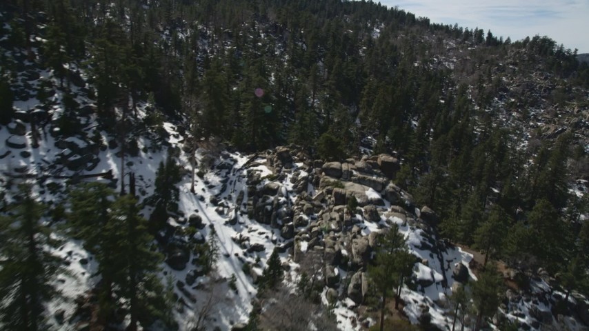 5K stock footage aerial video fly over evergreen forest on snowy San Bernardino Mountains slopes, California Aerial Stock Footage   AX0010_026E