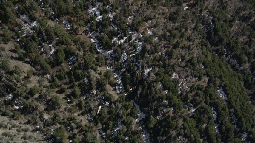 5K stock footage aerial video bird's eye view of evergreens and small snow patches in San Bernardino Mountains, California Aerial Stock Footage   AX0010_046