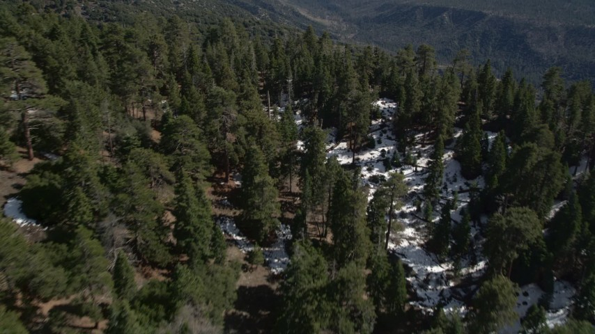 5K stock footage aerial video fly over forest and mountains with patches of snow in the San Bernardino Mountains, California Aerial Stock Footage | AX0010_047