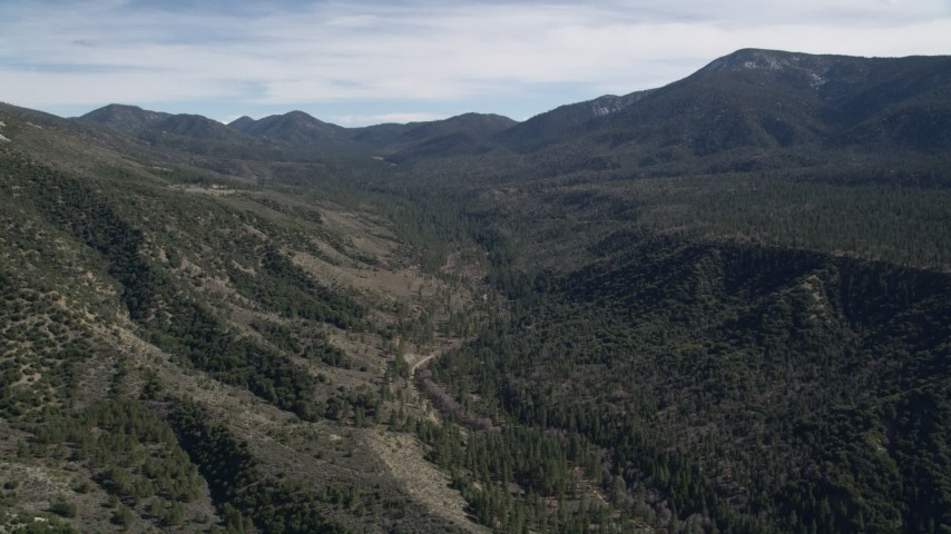 5K aerial video of a narrow canyon and evergreen forest in the San Bernardino Mountains, California Aerial Stock Footage | AX0010_050