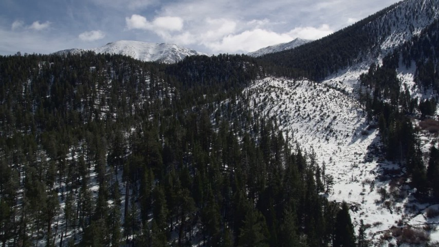 5K stock footage aerial video fly over forest and snowy slopes in the San Bernardino Mountains, California Aerial Stock Footage   AX0010_059