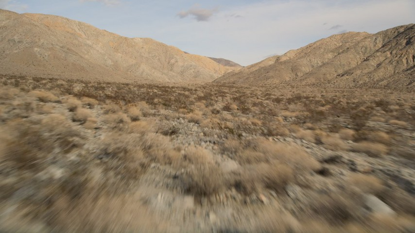 5K aerial video of low altitude fly over of desert plants toward mountains in Joshua Tree National Park, California Aerial Stock Footage | AX0011_016